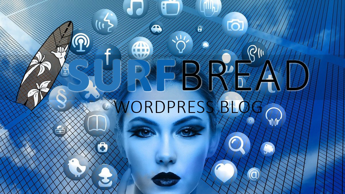 wordpress blog aufsetzen